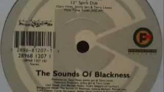 Sounds of Blackness - Testify (Amen Dub)
