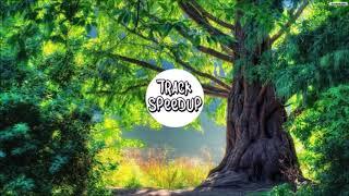 Something Big - Shawn Mendes (SpeedUp)