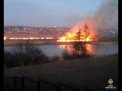 Телеканал ІНТБ: В Держекоінспекції нагадали про відповідальність за спалювання рослин
