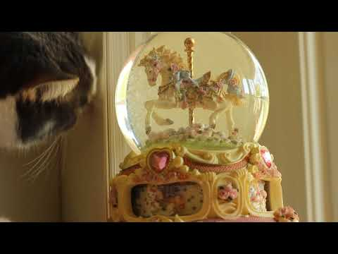 The San Francisco Music Box Company - Carousel Horse