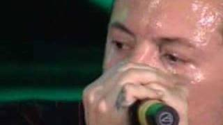 Linkin Park - 09 - Don
