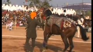 Bundeli Utsav 6 ( अश्व नृत्य )