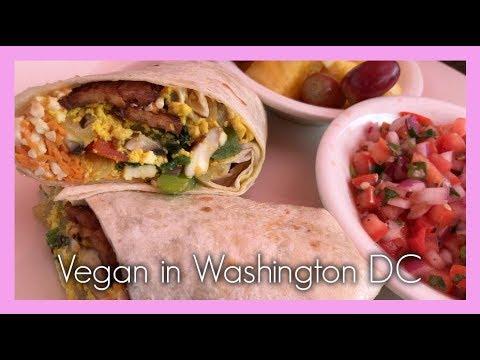 Vegan Travel Vlog #13: Washington, DC