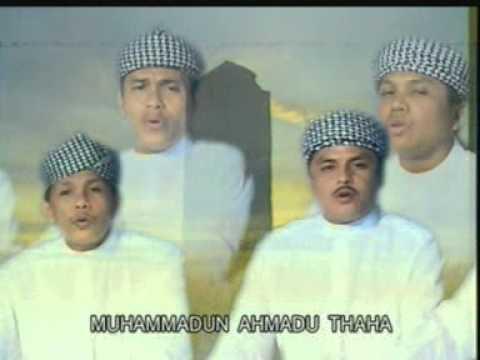 Hama qolbi