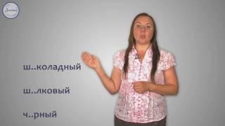 Русский 5 Буквы О Е после шипящих в окончаниях прилагательных