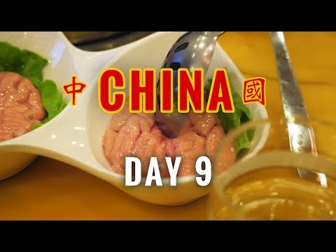 China Vlog 9 // Eating Brains at Xihu (West Lake), Hangzhou // 2017.4.29