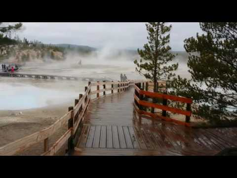 Porcelain Basin - FULL VIDEO TOUR (Norris Geyser Basin, Yellowstone National Park, WY)