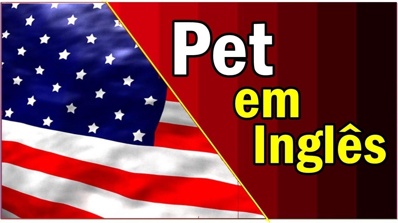 """Artesanato De Croche Em Geral ~ O Que Significa"""" Pet""""em ingles Dicas de ingl u00eas YouTube"""
