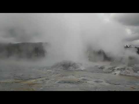 Grotto Geyser erupts in Yellowstone