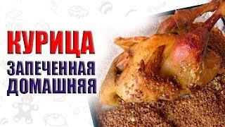 Как приготовить домашнюю курицу чтобы она не была жесткой. Как приготовить курицу несушку