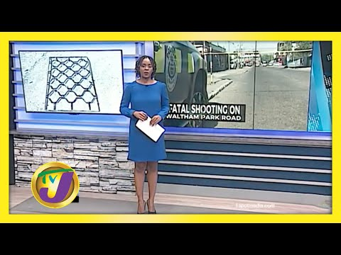 2 Killed in Waltham Robbery   TVJ News