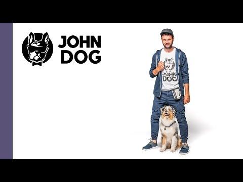 Leżeć, czyli jak nauczyć psa kłaść się na komendę – cześć 1 - TRENING PSA - John Dog