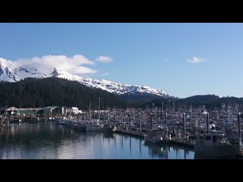 HOW TO LIVE IN ALASKA RENT FREE, EAT FREE FOR MONTHS WITH A GREAT PAYING JOB (Possible Free Travel)