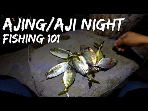 FISHING IN THE PHILIPPINES 2020: Ajing/Aji Night Fishing 101 (How to catch trevally:Tips & basics)