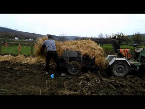 Self-sufficient agriculturalist