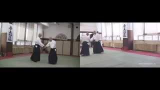 Senobashi (aihanmi omote iriminage,soho iriminage) TD, KT, JT