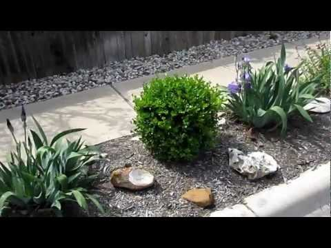 Xeriscape Yard, Stone, reduced sod & Native & Adapted plants , Lisa's Landscape & Design (updated)