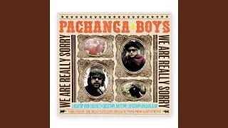 Pachanga Voice