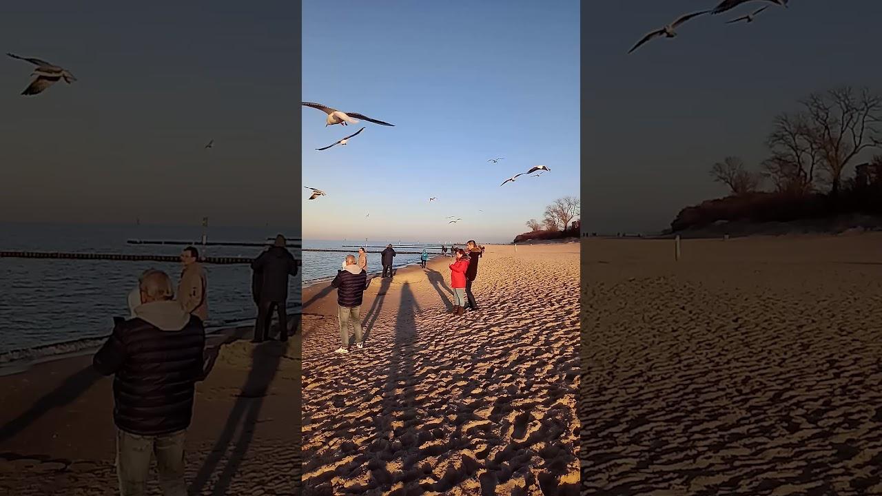 Und wieder am Strand - YouTube