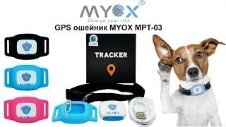 Обзор GPS ошейника MYOX MPT-03