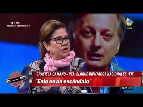 """La jefa del bloque de diputados del Frente Renovador, Graciela Camaño, dijo en """"Intratables"""" que la crisis de las tarifas está generando un """"estrépito social"""", en medio de las protestas en distintos puntos del país por el aumento en los servicios públicos."""