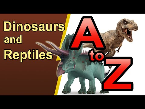 Dinosaurs And Reptiles A To Z - 01
