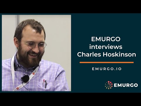 Charles Hoskinson interviewed by EMURGO 2019 - #10yearchallenge #sparkjoy