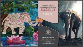 DST Tips & Tricks - Indian Elephant (DST / Time-lapse)