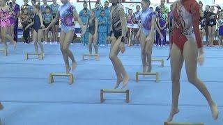 XII турнир по спортивной акробатике «Киндр–сюрприз» стартовал во Дворце гимнастики  13 03 2017