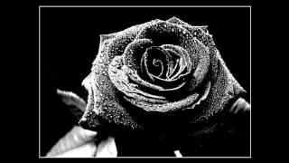 [HD] Matt Darey pres. Urban Astronauts - Black Flowers (Josh Gabriel Remix)