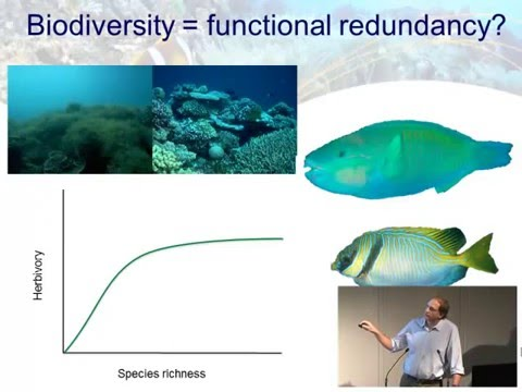 Morgan Pratchett - Changes in biodiversity and functioning i