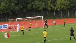 RL 2013/14 Berliner AK vs. VfB Auerbach 1:1