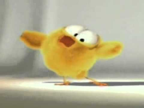 LITTLE CHICK TWEET SONG - AND DANCE (CUTE)