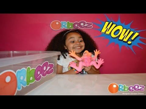 GIANT WATER GROWING FROG   Giant Orbeez   Kids Science Review