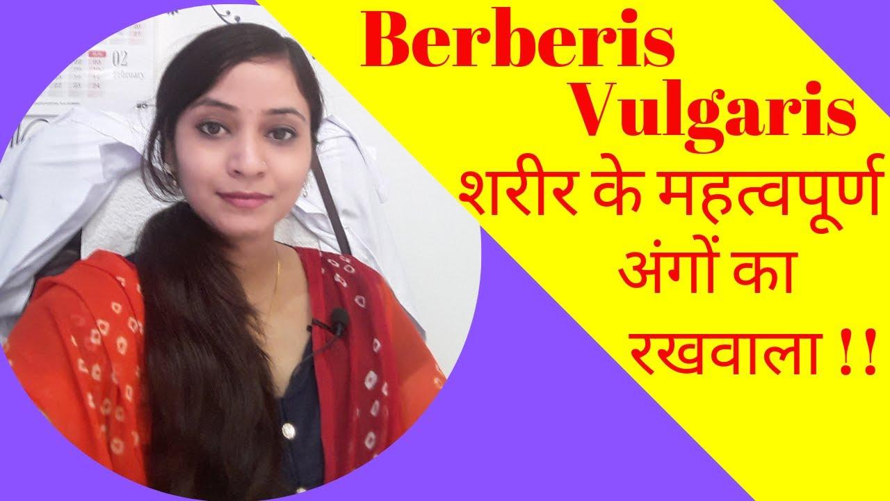 Berberis vulgaris mother tincture   berberis vulgaris q   berberis vulgaris  uses & benefits