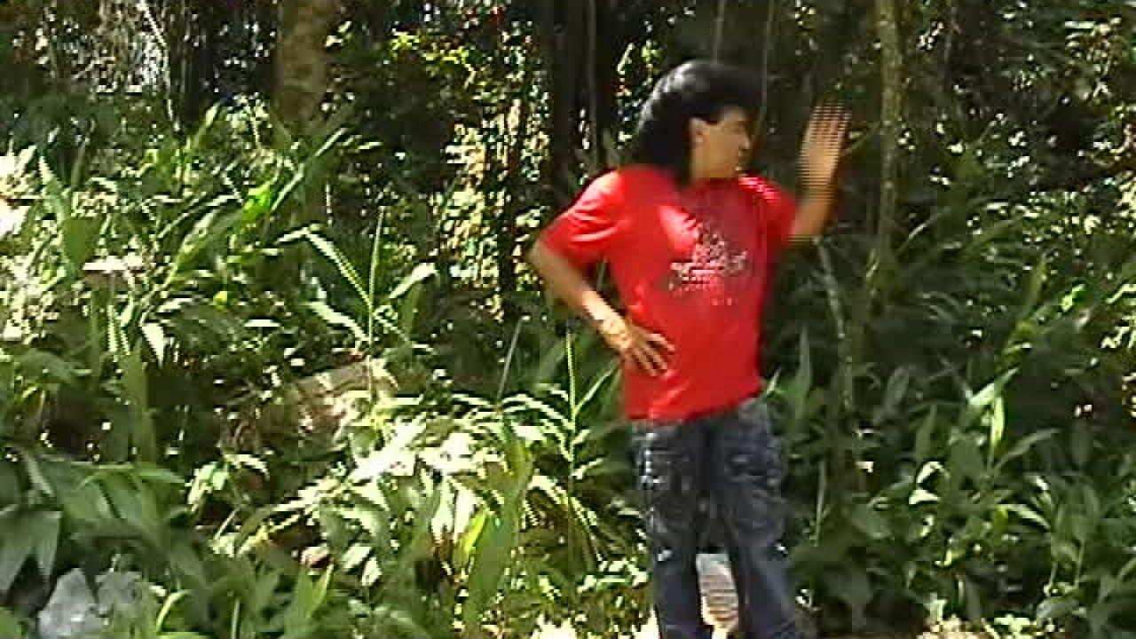 Zezinho Barros - DVD Jogo da Vida, Oficial (Completo ...
