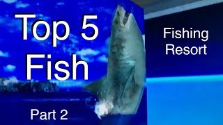 Top 5 Fish - Fishing Resort Wii - part 2