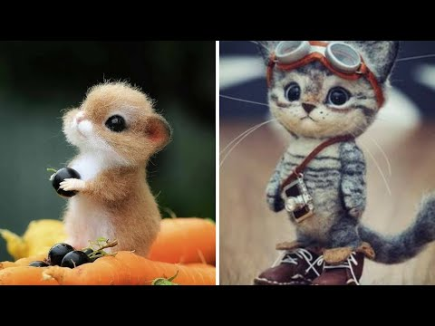 Cute baby cats Videos Compilation cutest moment of the funniest cats - Soo funny! #1