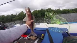 Рыбалка на реке Паша
