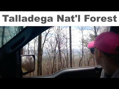 Adventures in Talladega National Forest