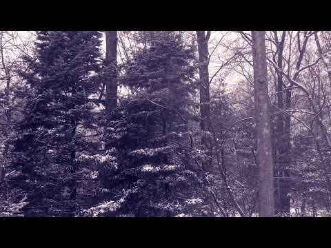 Minute 8  First Snow  Music For Film