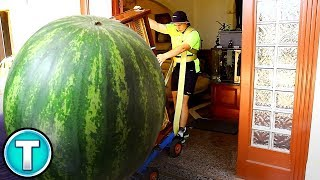 10 Massive Fruits and Vegetables