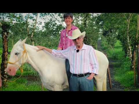Conscious Horse, Conscious Rider Facilitators Class With Gary Douglas & Suzy Godsey