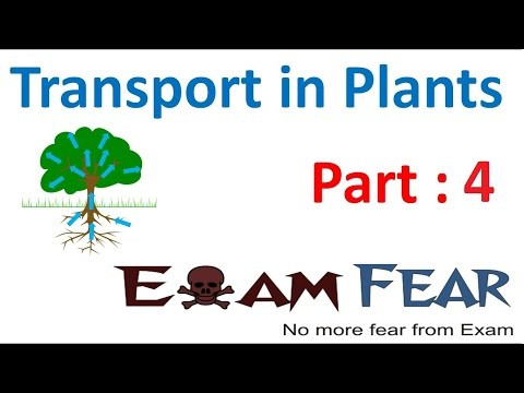 Biology Transport in Plants part 4 (Facilitated diffustion) CBSE class 11 XI