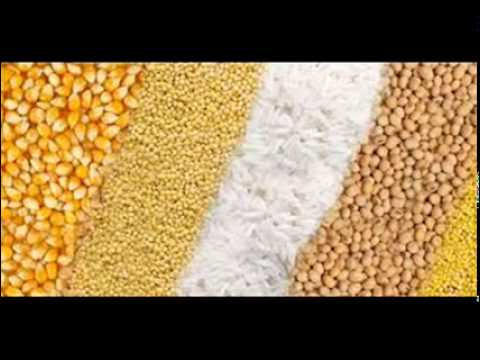 Wanda aur Food Grains by Dr Ashraf Sahibzada