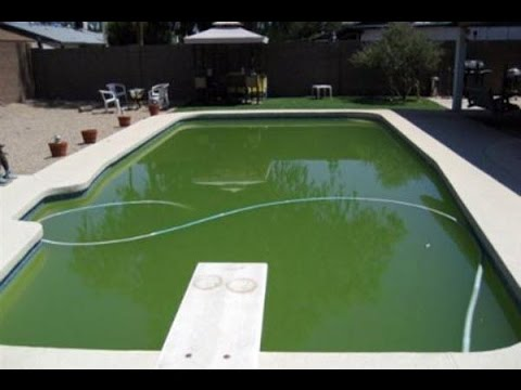 How to make your pool water clear youtube How to draw swimming pool water