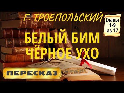 Белый БИМ Чёрное ухо. Гавриил Троепольский. (Главы 1-9 из 17)