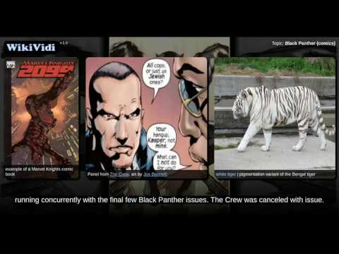 Black Panther (comics) - WikiVidi Documentary