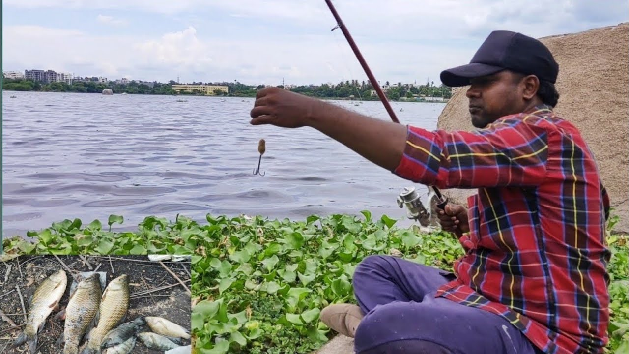 Fish Hunting | Rohu Fish Catch | Traditional Fishing | Hyderabad | Fishing