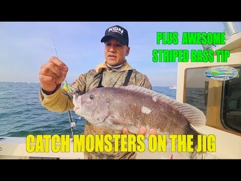 HOW TO TIPS BLACKFISH TAUTOG & STRIPED BASS !!